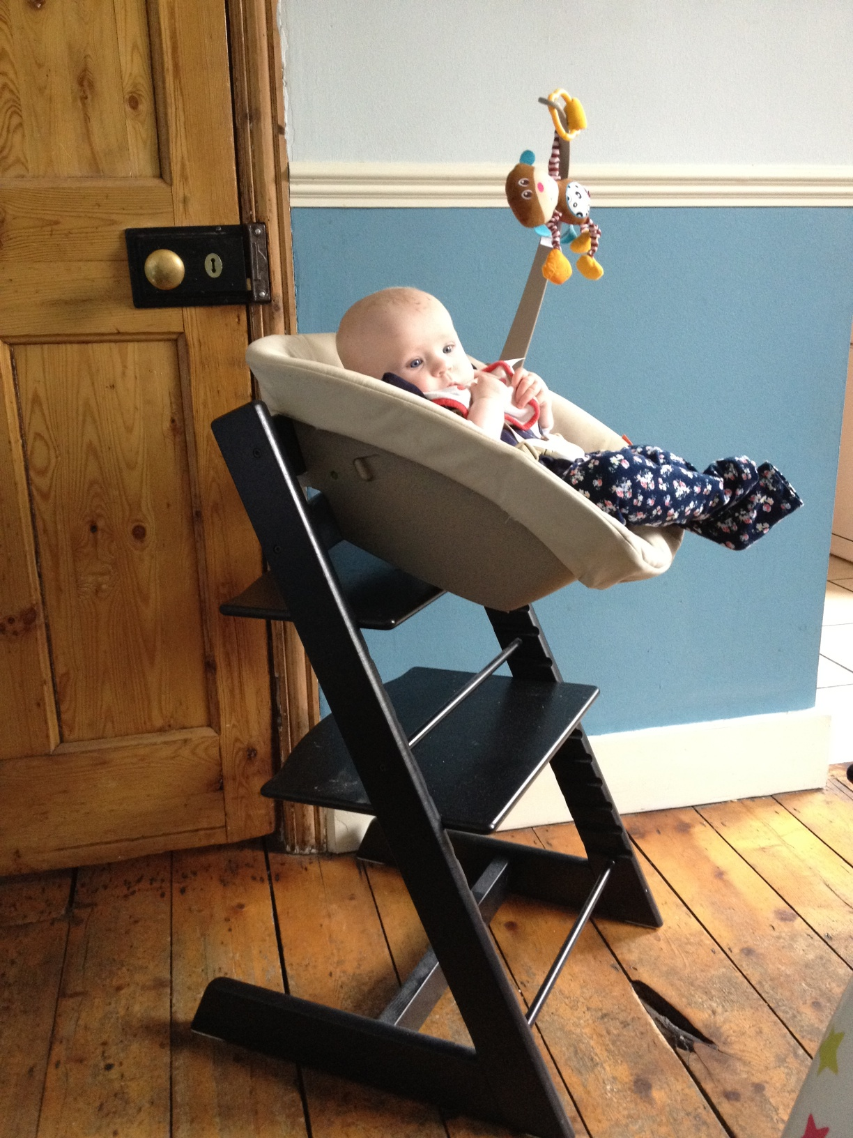 Stokke Tripp Trapp And Newborn Seat