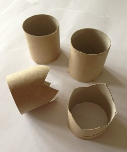 toilet roll crowns