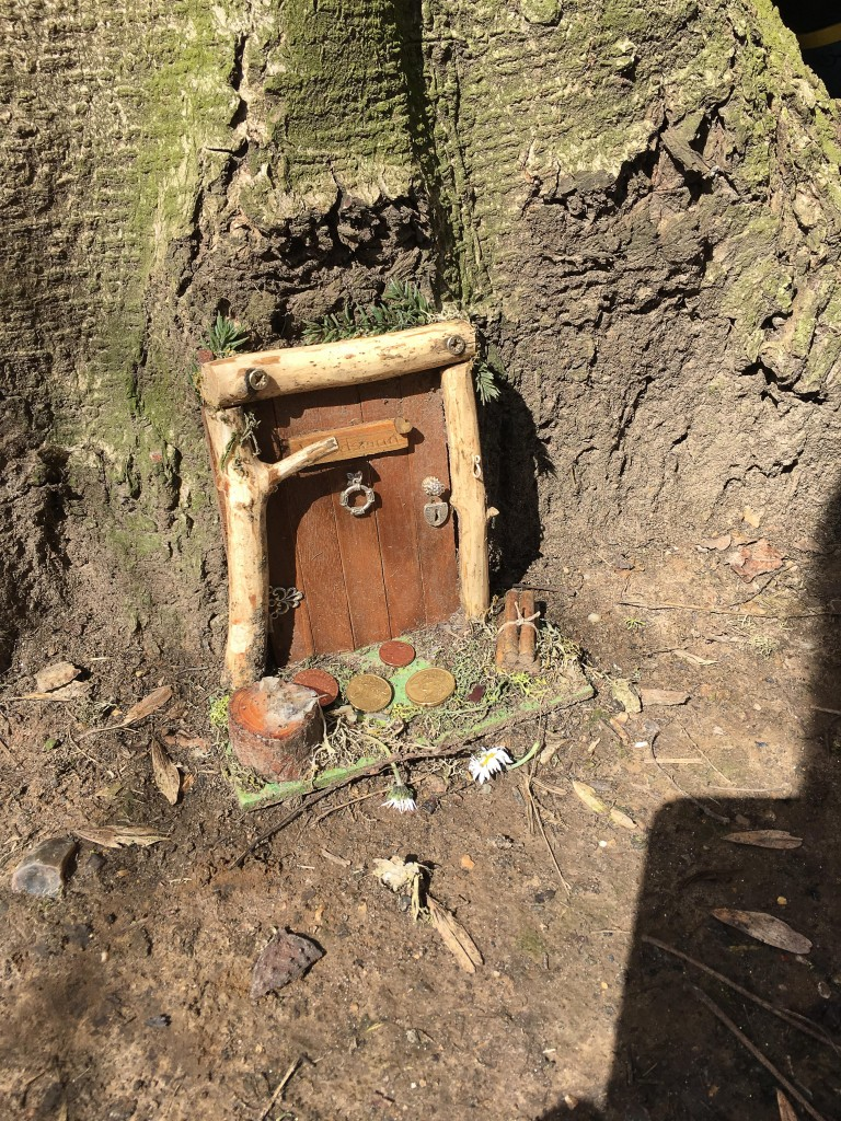wooden door in tree